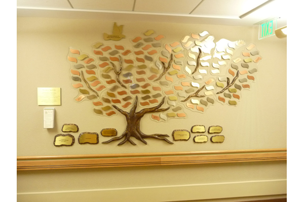 Donor Tree Recognition Projects | US Bronze